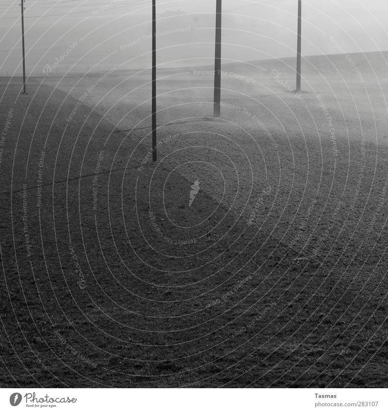 Fifty Shades of Grey ruhig Landschaft Feld Nebel ästhetisch Strommast Telefonmast