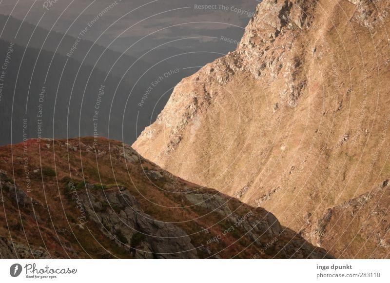 Bergblick Umwelt Natur Landschaft Urelemente Berge u. Gebirge Felsen wandern Felswand Gesteinsformationen Geologie europa Karpaten Rumänien Siebenbürgen