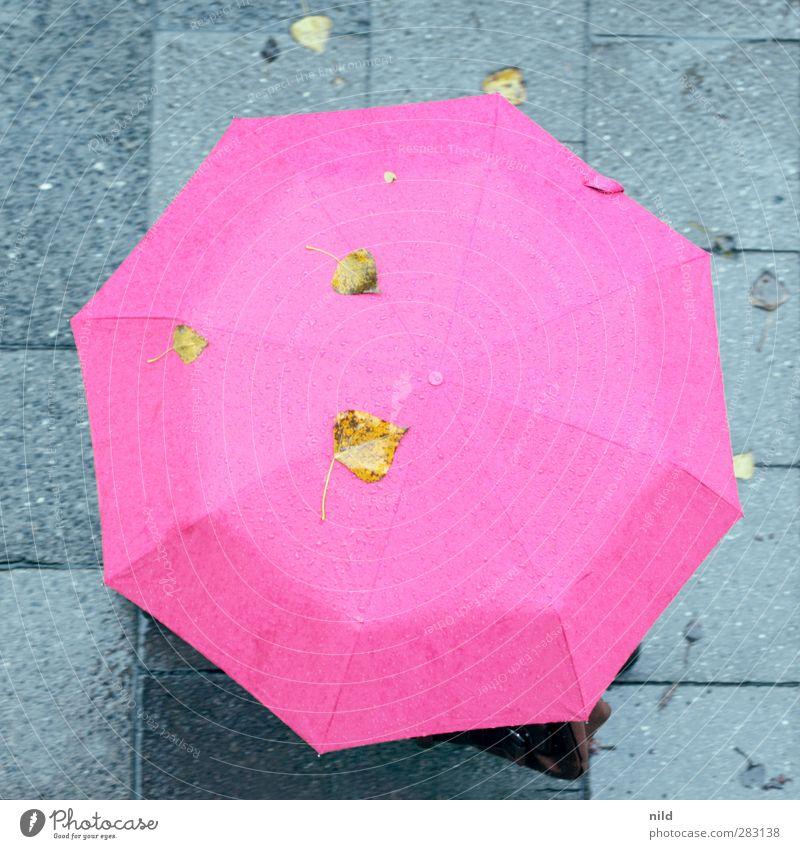 Sauwetter Mensch 1 Herbst Wetter schlechtes Wetter Regen Stadt Bürgersteig Tasche Regenschirm gehen kalt Gesundheit Erkältung herbstlich Blatt Farbfoto