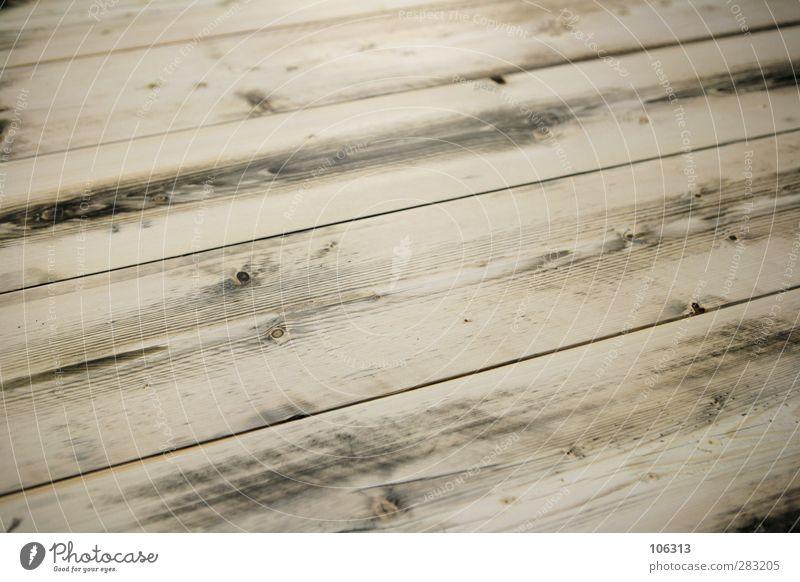 # Umwelt Leben Holz Wald Baum Tod Tisch Tischplatte Tischlerarbeit Maserung unbehandelt Bodenbelag Dielenboden Flur altehrwürdig pupsi Farbfoto