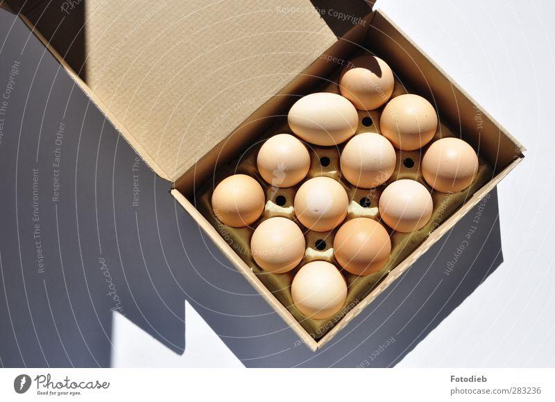 Denken Sie über den Tellerrand hinaus Lebensmittel Ei Frühstück Hähnchen Papier Verpackung eckig rund braun Pappverpackung Faltschachtel Schatten Farbfoto