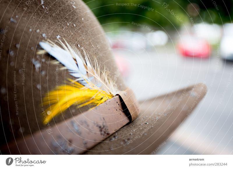 put your hat on when it's raining gelb braun Bekleidung Feder Hut Leder Accessoire geduldig Filz Filzhüte Federschmuck