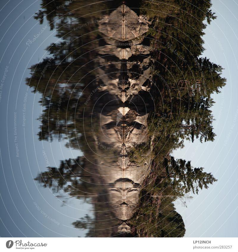 Schwedische Transformers Ferien & Urlaub & Reisen Tourismus Ausflug Abenteuer Sommerurlaub Umwelt Tier Wasser Baum Felsen Seeufer Schweden Stein Aggression