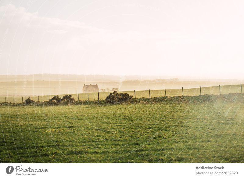 Grüne Wiese auf dem Land Natur grün Feld Landschaft Bauernhof ländlich Gras natürlich Landen Länder schön Sonnenstrahlen Aussicht Umwelt Horizont Wetter