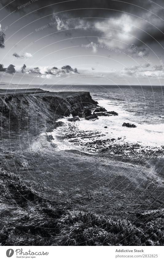 BW Aufnahme von der Felsküste Küste Seeküste Felsen Meer Landschaft Strand Natur Wasser natürlich Meereslandschaft Stein schön Gras Nordirland