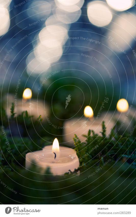 Flimmerlicht Feste & Feiern Weihnachten & Advent Kerze Kerzenschein Kerzenstimmung Kerzenflamme glänzend leuchten blau brennen Farbfoto Innenaufnahme