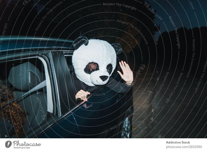 Mann mit Pandamaske lehnte sich aus dem Autofenster. Maske Frieden gestikulieren Mensch zeigen Rücken Sitz Passagier Fach PKW Fahrzeug Verkehr Hand
