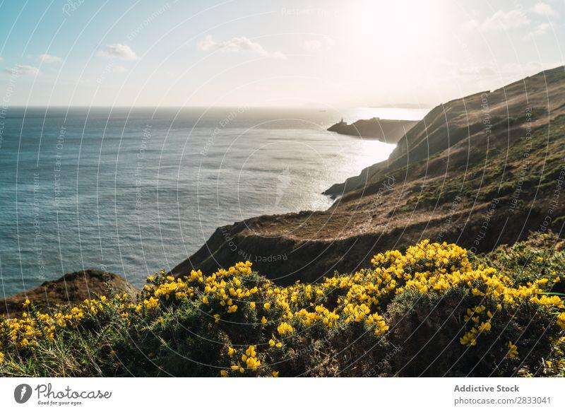 Großer Küstenfelsen und ruhiges Meer Seeküste Felsen Landschaft Strand Natur Wasser natürlich Meereslandschaft Stein schön grün Gras Ferien & Urlaub & Reisen