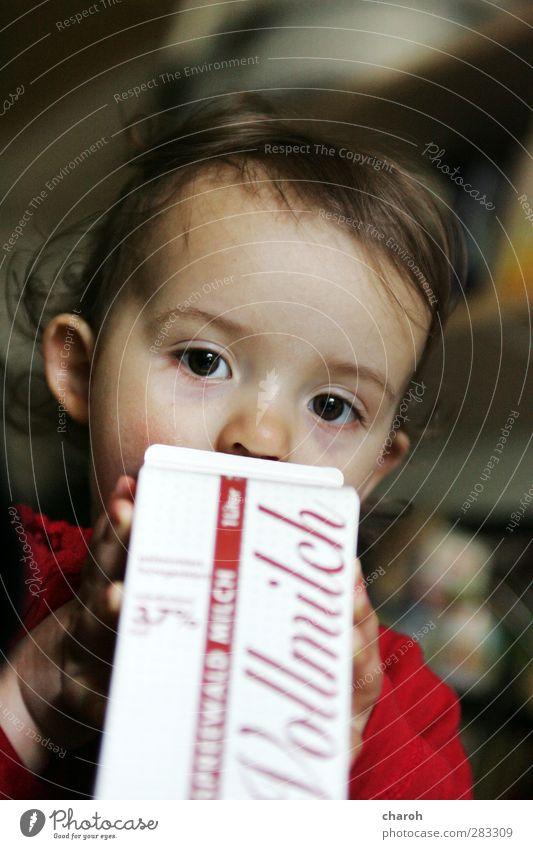 Milchmädchen Mensch grün weiß rot Mädchen Gesicht gelb feminin braun Kindheit Lebensmittel Getränk trinken Kleinkind Milcherzeugnisse