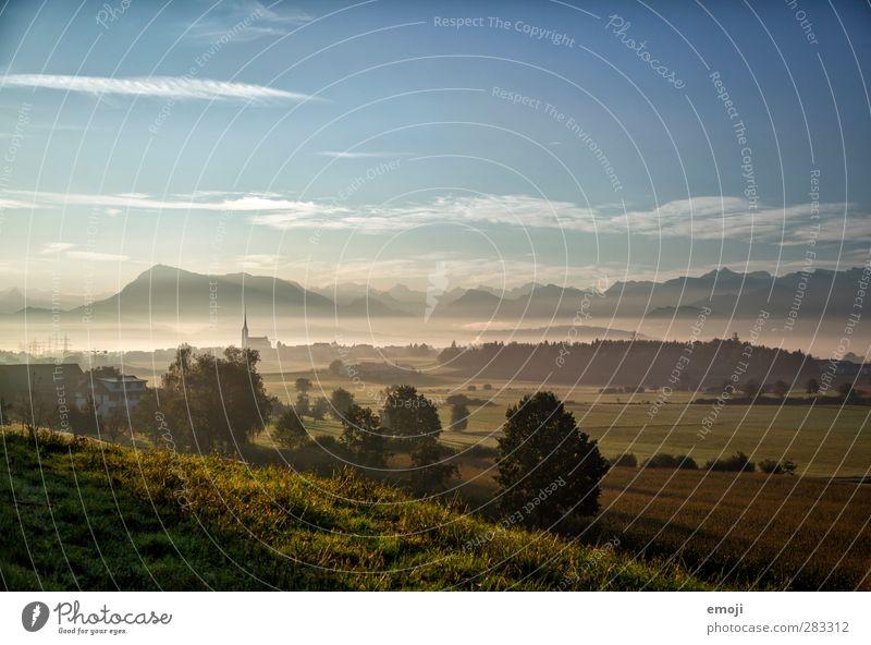 Schweizer Meer Himmel Natur Landschaft Umwelt Berge u. Gebirge Herbst natürlich Feld Nebel Alpen Dorf historisch Schweiz Nebelmeer