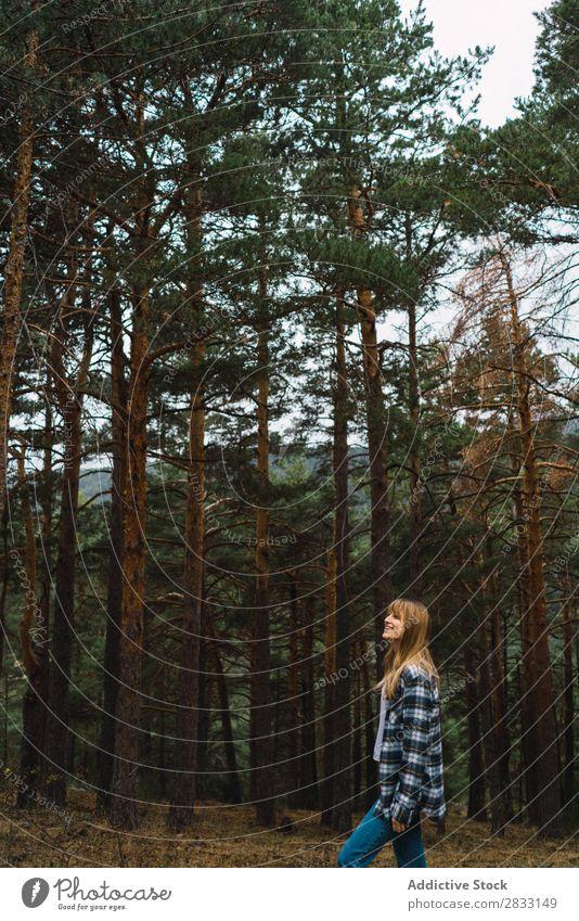 Frau, die im Wald posiert. Natur Jugendliche Mensch Freizeit & Hobby Baum