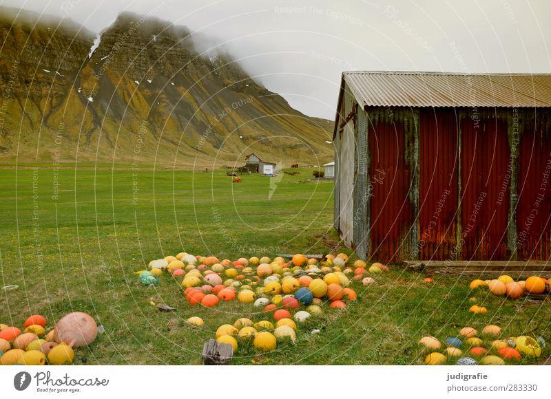 Island Umwelt Natur Landschaft Wolken Klima Berge u. Gebirge Haus Hütte Gebäude Fassade Schifffahrt Boje kalt rund mehrfarbig Stimmung Fischer