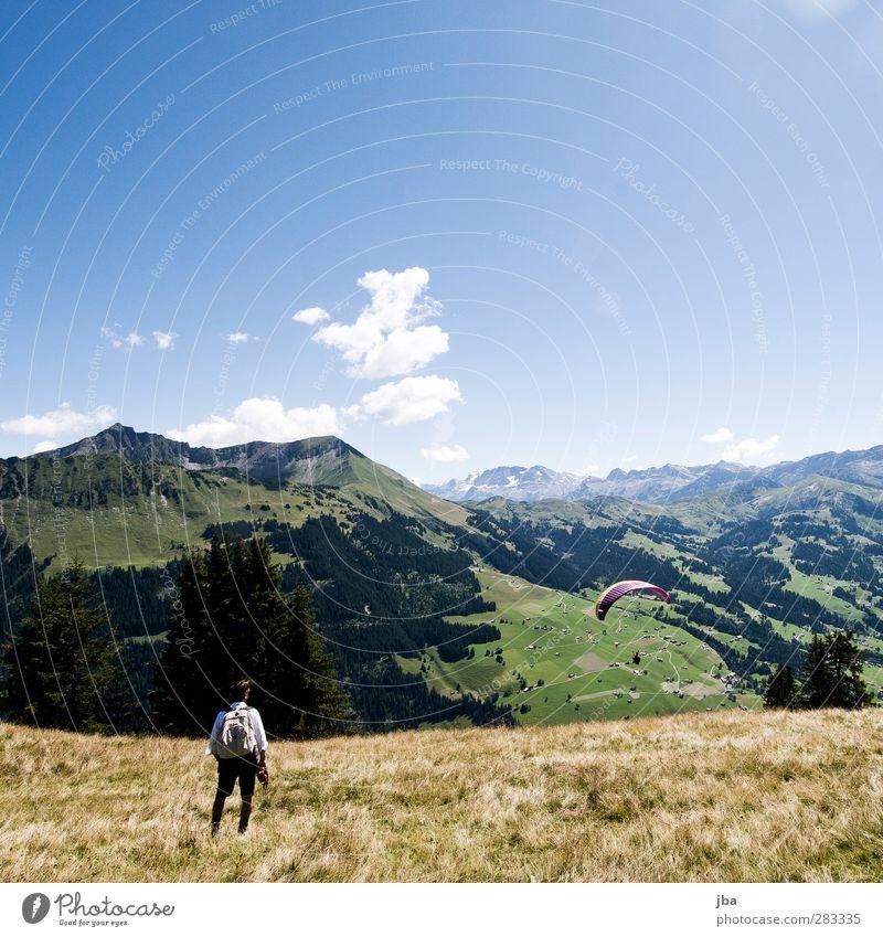 in den Alpen Mensch Natur Sommer ruhig Landschaft Erholung Wald Ferne Wiese Berge u. Gebirge Herbst Freiheit fliegen maskulin wandern Tourismus