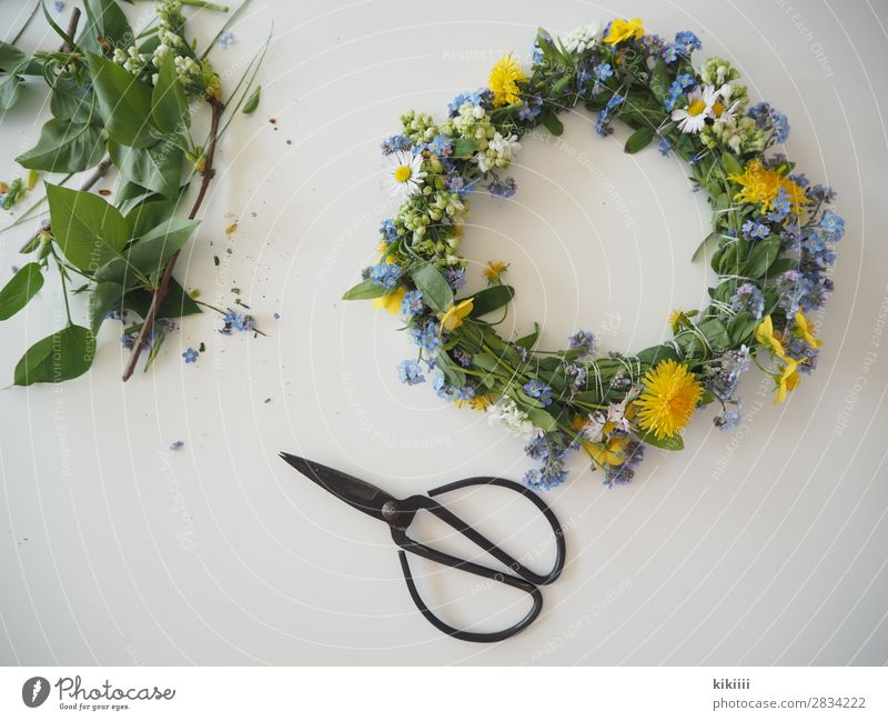 Frühlingskranz Natur Pflanze Blume Blatt Blüte Wildpflanze Gänseblümchen Vergißmeinnicht Löwenzahn Blumenkranz Garten Accessoire Dekoration & Verzierung
