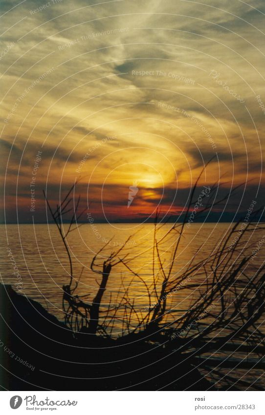 Sonnenuntergang I Wasser Meer Strand Abschied