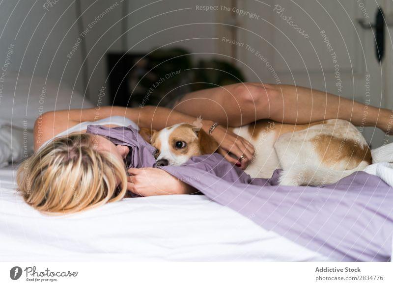 Sexy junge Frau zu Hause, die mit ihrem Hund spielt. Haustier Liebe Mensch Jugendliche Erotik Mädchen Kaukasier Glück heimwärts hübsch schön heiter Erholung