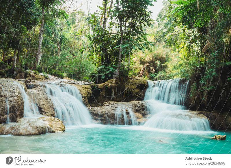 Wunderschöne kleine Wasserfälle fließend Wald Kaskade Natur Landschaft Ferien & Urlaub & Reisen Fluss Wasserfall Park grün strömen Tourismus Urwald tropisch