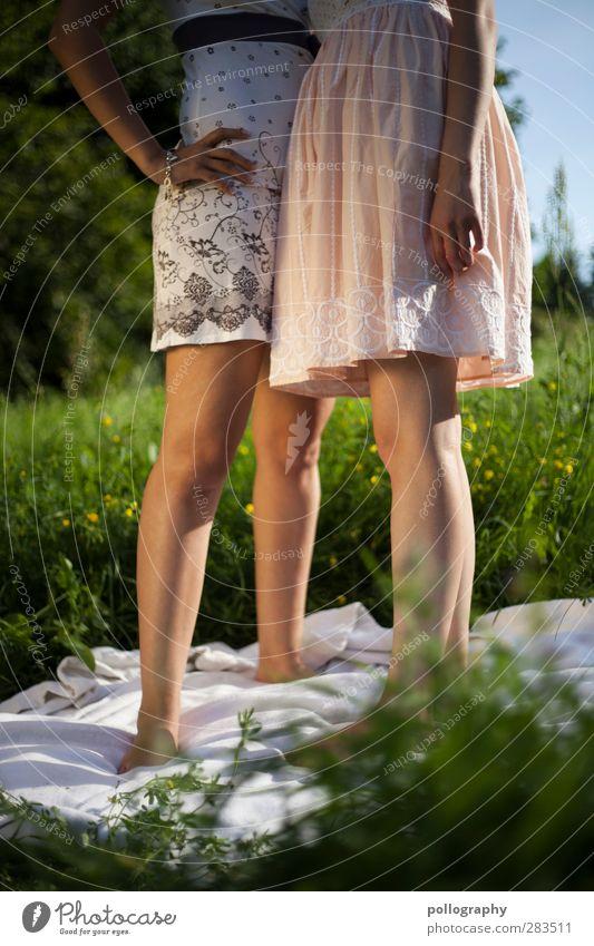 girly power Mensch Frau Himmel Natur Jugendliche Pflanze Blume Erwachsene Wiese Junge Frau feminin Leben Erotik Gras Garten Beine