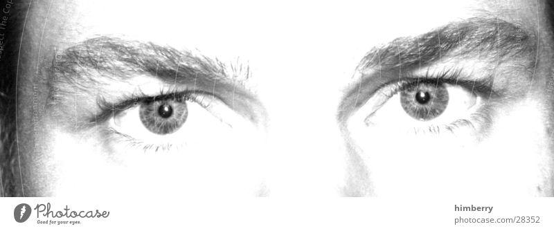 eyecatcher Mensch Mann Gesicht Erwachsene Auge Stil Haut maskulin Design Perspektive Lifestyle Kosmetik Momentaufnahme Gesichtsausdruck Fan Wimpern