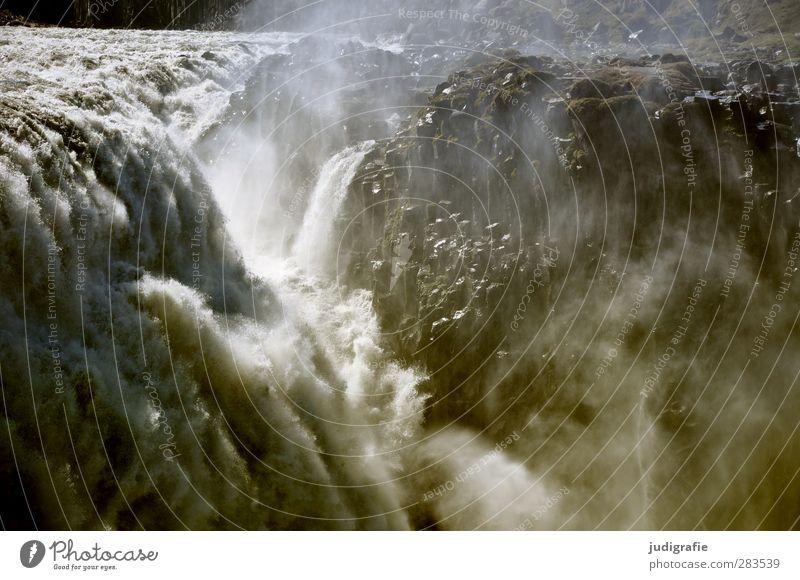 Island Umwelt Natur Landschaft Urelemente Wasser Klima Wasserfall Dettifoss natürlich Kraft Fluss fließen Rauschen Farbfoto Gedeckte Farben Außenaufnahme