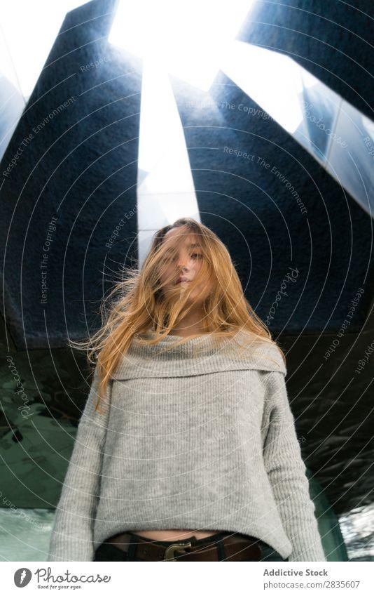 Hübsche Frau mit fliegenden Haaren hübsch Porträt Jugendliche schön Blick in die Kamera Behaarung träumen Fürsorge besinnlich Pullover lässig Gesicht Mädchen