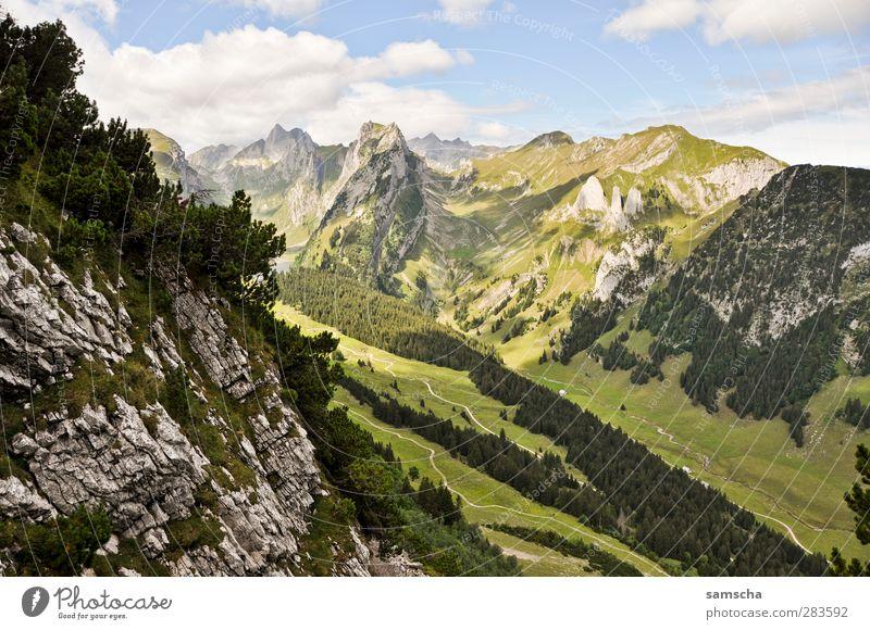 Alpstein Natur Landschaft Urelemente Hügel Felsen Alpen Berge u. Gebirge Gipfel Schneebedeckte Gipfel Stein gigantisch groß hoch Abenteuer Zufriedenheit