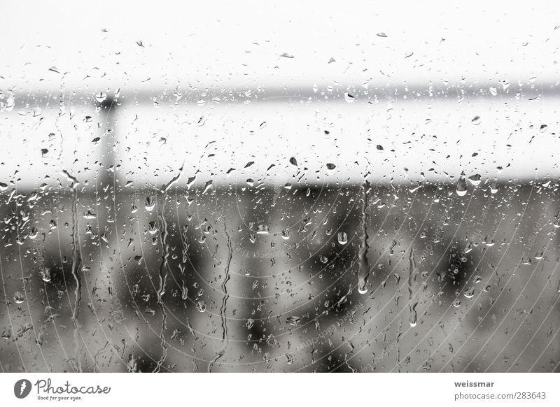 Regenblick Wasser Wetter schlechtes Wetter Cottbus Menschenleer dunkel kalt nass trist Stadt grau weiß Gedeckte Farben Außenaufnahme Innenaufnahme Tag Licht