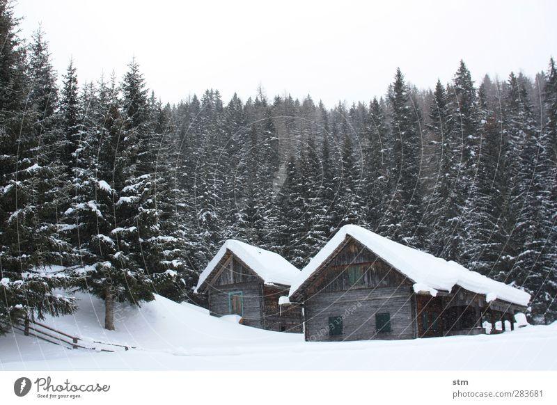 vorfreude Natur Ferien & Urlaub & Reisen Baum Landschaft Winter Haus Wald Umwelt Wiese Berge u. Gebirge Schnee Holz Horizont Schneefall Eis Wetter