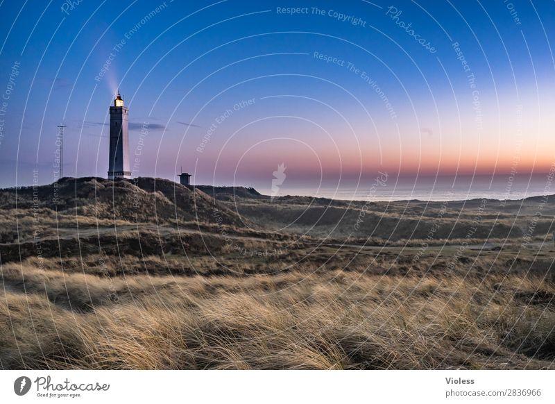 blavandshuk fyr lighthouse IIII Leuchtturm Blavands Huk Blavands Fyr Dänemark Düne Stranddüne Dünengras Jütland Lighthouse Fyrkat Nordsee Bunker Sonnenuntergang