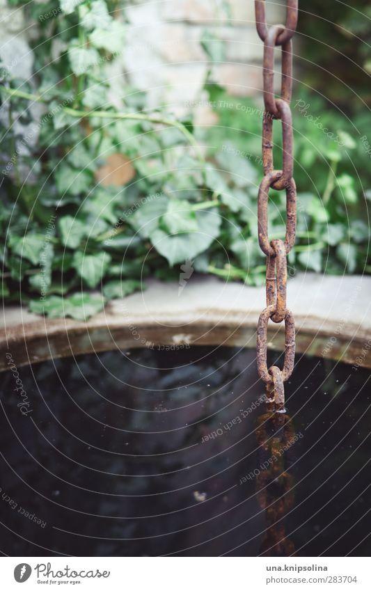 in den brunnen gefallen Umwelt Wasser Pflanze Efeu Brunnen Kette Stein Metall hängen nass natürlich Reflexion & Spiegelung untergehen Farbfoto Außenaufnahme