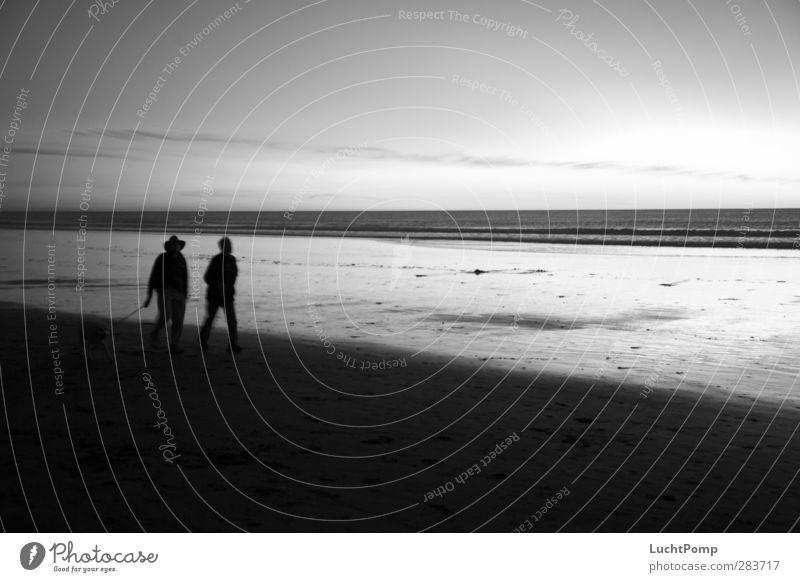 Old Friends Hund Mann Wasser Meer ruhig Strand dunkel Sand gehen Horizont Freundschaft Zusammensein Idylle laufen wandern Spaziergang