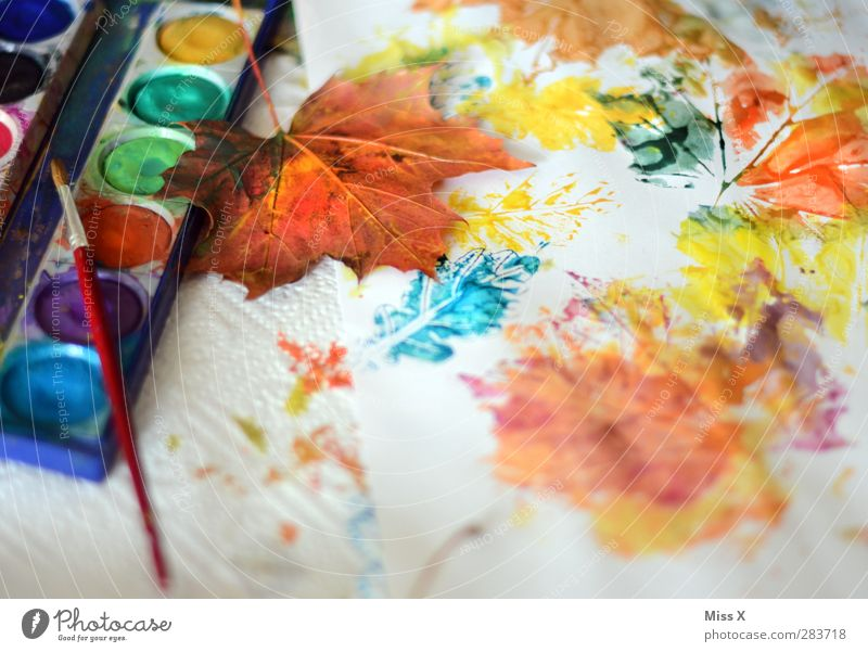 Herbstarbeit Freizeit & Hobby Kunst Blatt mehrfarbig Farbkasten Farbe Kreativität Herbstlaub Papier Farbstoff Ahornblatt Pinsel Farbfoto Nahaufnahme Muster