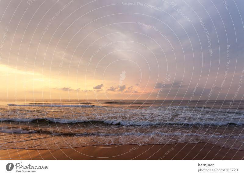 tribure to CDF Sand Wasser Wolken Horizont Sonnenaufgang Sonnenuntergang Sommer Wellen Küste Strand Menschenleer schön blau gold orange Meer ruhig Kitsch Goa