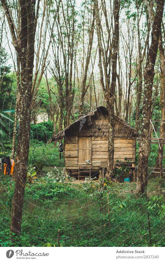 Kleines Holzhaus Mit Strohdach Ein Lizenzfreies Stock Foto