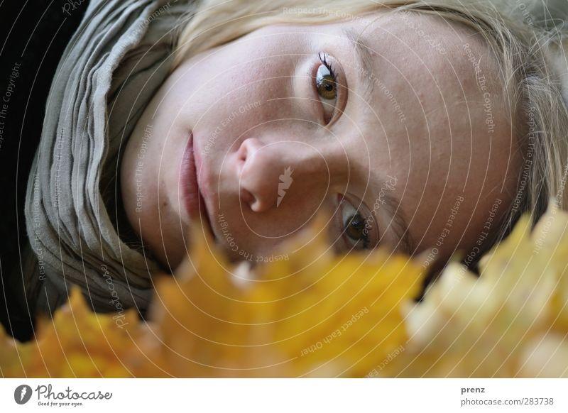 Herbstportrait 1 feminin Junge Frau Jugendliche Erwachsene Mensch 18-30 Jahre Pflanze Blatt gelb grau liegen Kopf natürlich Farbfoto Außenaufnahme