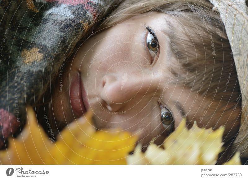 Herbstportrait 2 Mensch feminin Junge Frau Jugendliche Erwachsene Kopf 1 18-30 Jahre Pflanze Blatt gelb grau natürlich Porträt Farbfoto Außenaufnahme