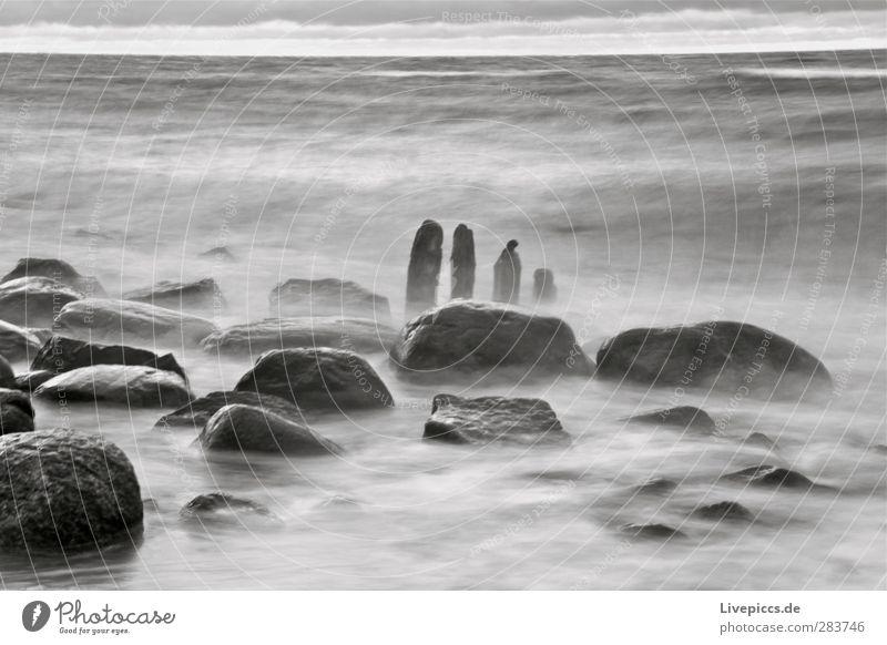 wilde Küste Umwelt Natur Landschaft Wasser Herbst schlechtes Wetter Unwetter Wind Wellen Strand Ostsee Meer Holz grau schwarz weiß Stein Schwarzweißfoto