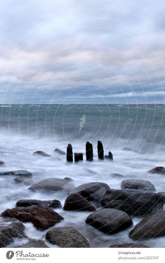 wilde Küste Umwelt Natur Landschaft Urelemente Luft Wasser Himmel Wolken Herbst schlechtes Wetter Wind Wellen Strand Ostsee Meer Stein Holz blau grau Farbfoto