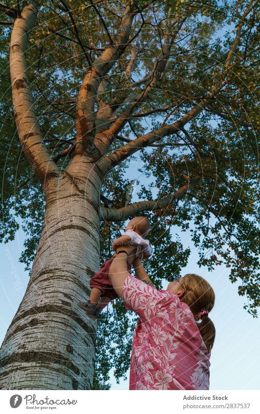 Frau zeigt dem Kind den Baum Mutter Park zeigen Familie & Verwandtschaft Glück Mensch Fröhlichkeit Sommer Lifestyle Liebe Eltern Natur Jugendliche Freude