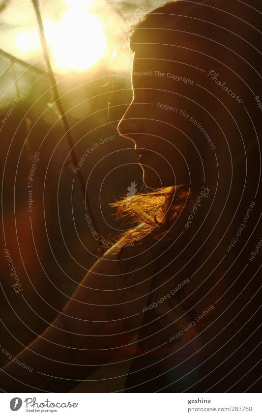 Goldrausch feminin Junge Frau Jugendliche Gesicht 1 Mensch 18-30 Jahre Erwachsene Herbst Garten Park Wald beobachten Denken entdecken träumen ästhetisch