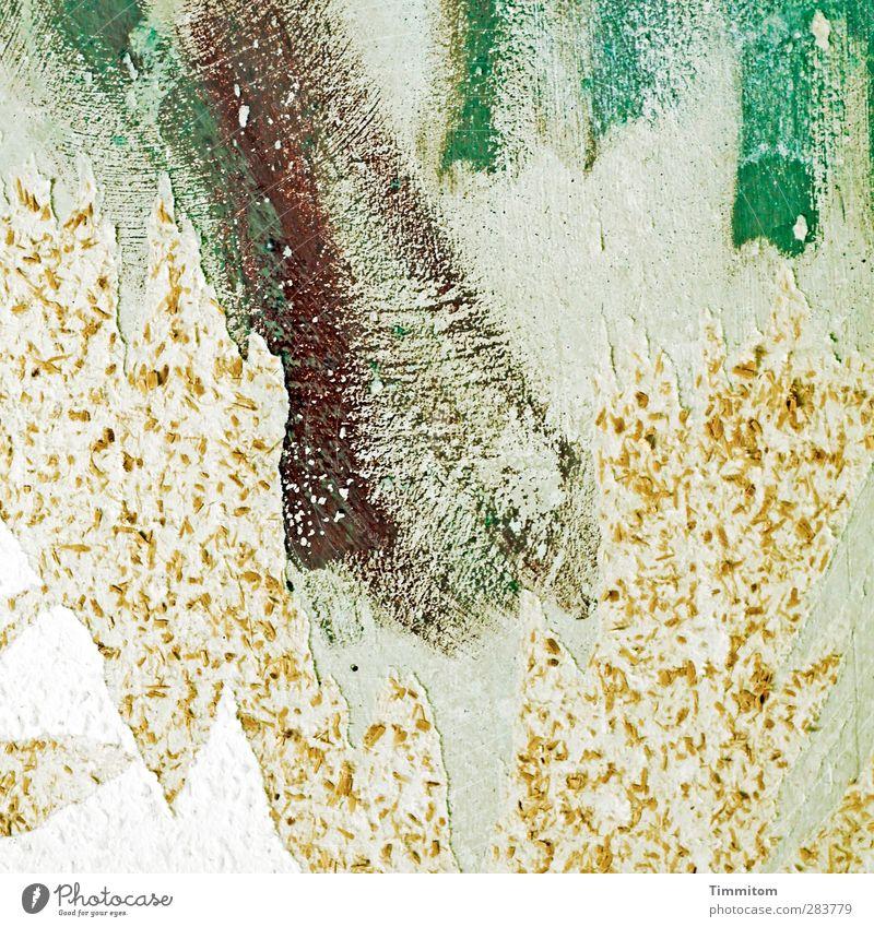 Long Tall Sally grün weiß Farbe Freude Gefühle grau braun wild kaputt Tapete Renovieren Rest Raufasertapete Tapetenwechsel