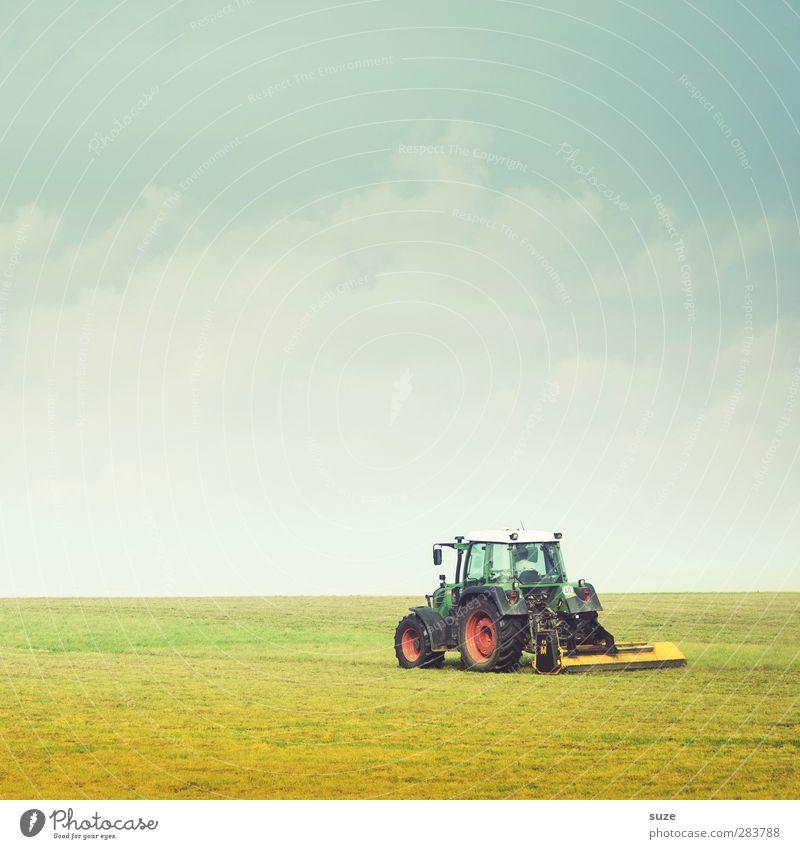 Übers Land trecken Himmel Natur blau grün Sommer Landschaft Umwelt Wiese Gras Horizont Arbeit & Erwerbstätigkeit natürlich Feld Erde Schönes Wetter