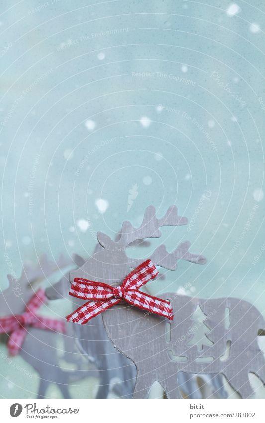 the Rudolphs blau Weihnachten & Advent weiß rot Winter Schnee Feste & Feiern Metall Schneefall Eis Wohnung Dekoration & Verzierung Frost Schnur Kitsch