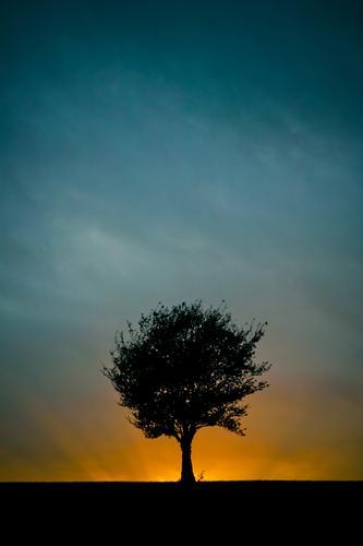 Die 5 Elemente... Natur blau Baum Landschaft schwarz Religion & Glaube außergewöhnlich Wetter orange leuchten ästhetisch bedrohlich Feuer Macht