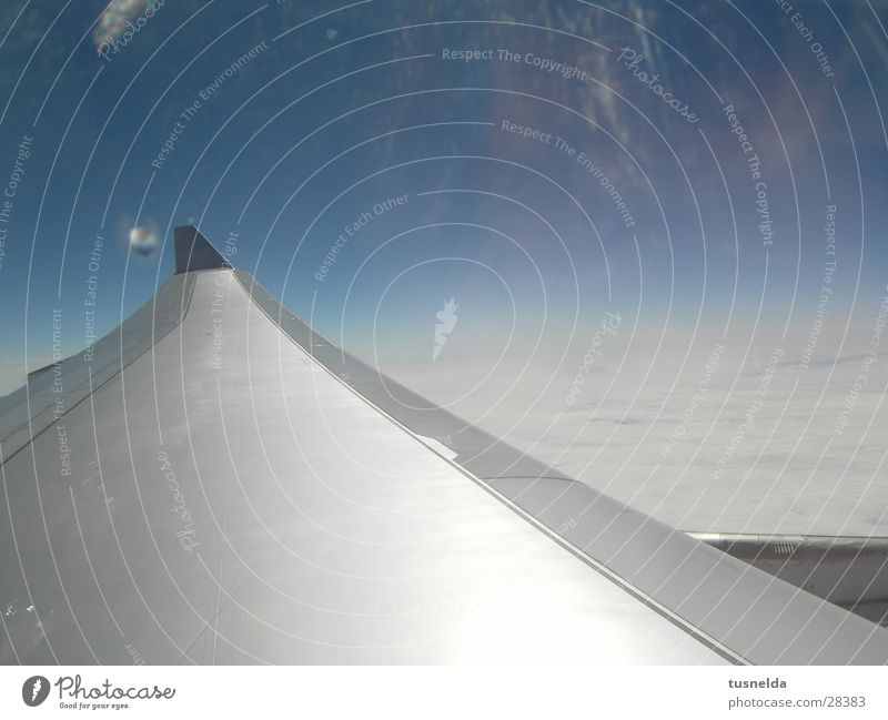 Tragfläche Wolken Horizont Flugzeug Luftverkehr Himmel