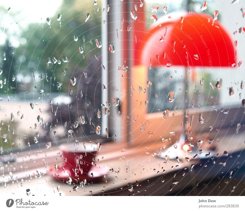 teatime Heißgetränk Kaffee Tee Häusliches Leben Innenarchitektur Möbel Lampe Garten Fenster orange Tischlampe Fensterbrett gemütlich Teetrinken Tasse Regen