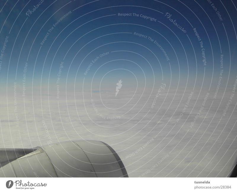 Wolkenmeer Flugzeug Horizont Himmel fliegen Ferien & Urlaub & Reisen