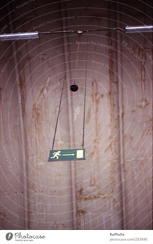 Markthalle V Bauwerk Gebäude hängen grün Notausgang Schilder & Markierungen Deckenlampe aufhängen Haken Wand oben Menschenleer dreckig alt Farbfoto