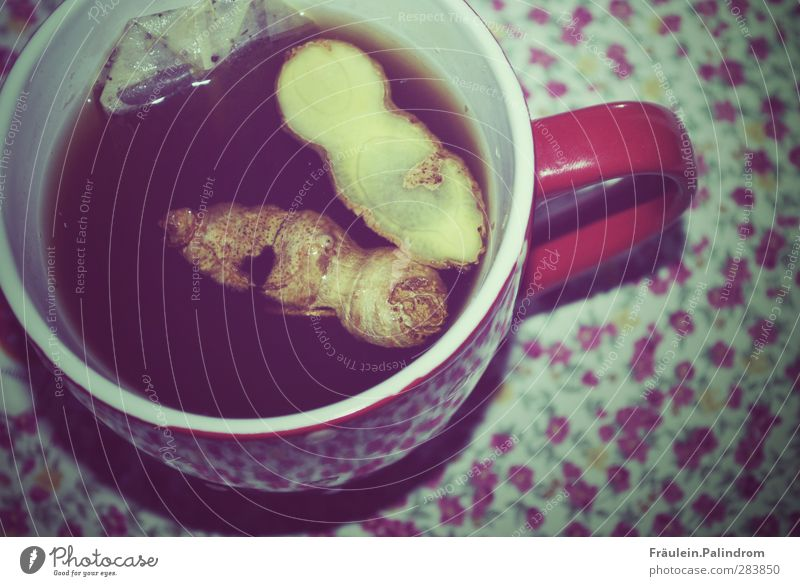 Ingwer in einer Teetasse auf geblümtem Untergrund Frühstück Kaffeetrinken Getränk Heißgetränk genießen Gesundheit heiß braun rot Wärme Teebeutel Teetrinken