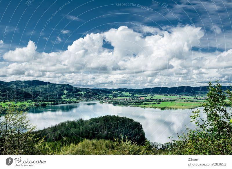 Kochelsee Natur Landschaft Himmel Wolken Sommer Schönes Wetter Baum Berge u. Gebirge See Ferne kalt natürlich Erholung Horizont Idylle nachhaltig Perspektive